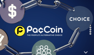 Paccoin PAC 仮想通貨